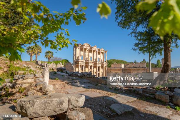 ephesus, celsus library ruins and trees - izmir stock pictures, royalty-free photos & images