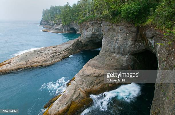 epic landscapes - cape flattery stock photos and pictures