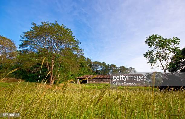 epic landscapes - guanacaste stock pictures, royalty-free photos & images