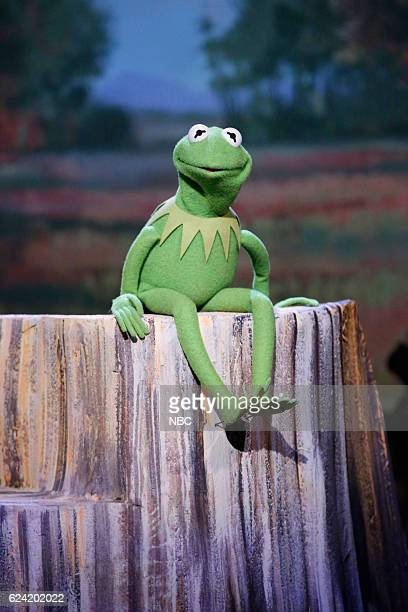 Kermit The Frog sings 'It's Not Easy Being Green' on March 17 2014