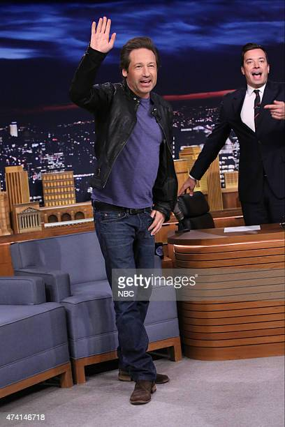 Actor David Duchovny on May 20 2015