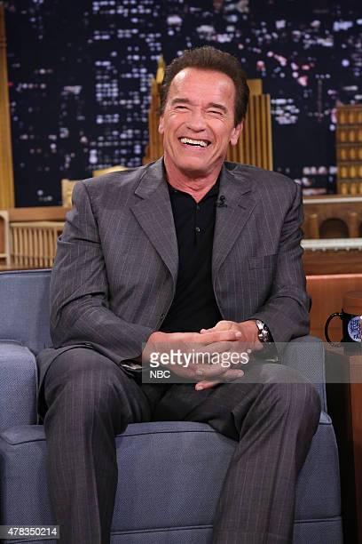 Actor Arnold Schwarzenegger on June 24 2015