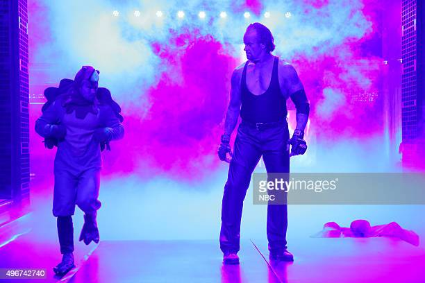 The Undertaker on November 11 2015