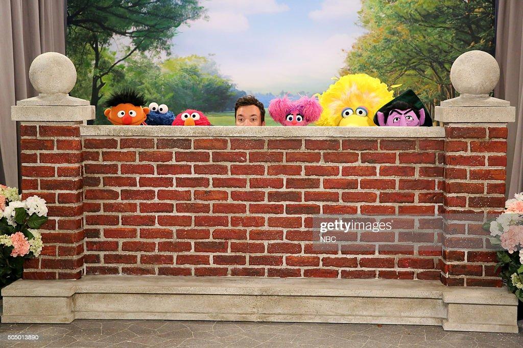 Ernie, Oscar the Grouch, Elmo, host Jimmy Fallon, Abby Cadabby, Big Bird, and Count von Count during the 'Sesame Street Photobomb' sketch on January 14, 2016 --
