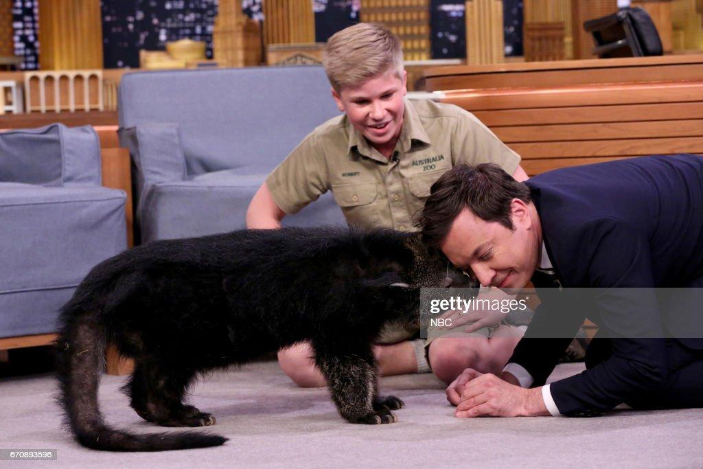 Animal Expert Robert Irwin with host Jimmy Fallon on April 20, 2017 --