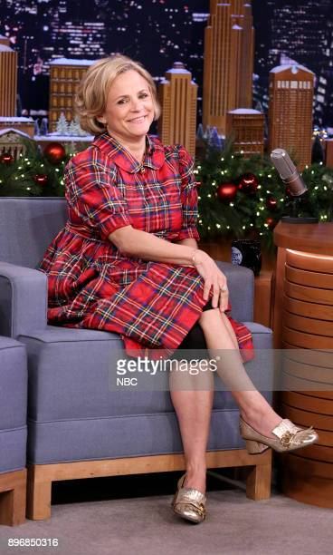 Actress/Comedian Amy Sedaris during an interview on December 21 2017