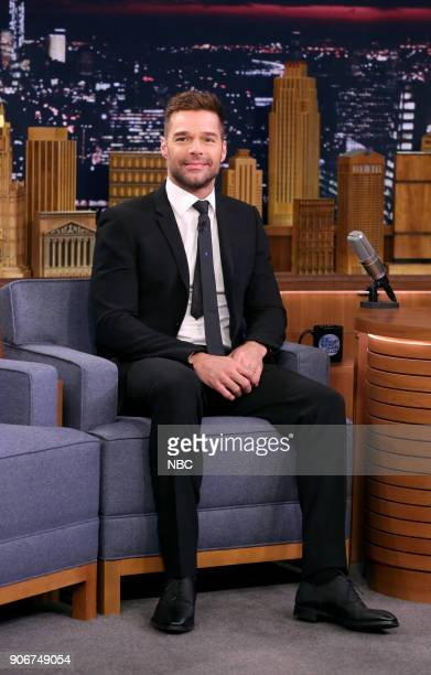 Actor/Singer Ricky Martin during an interview on January 18 2018