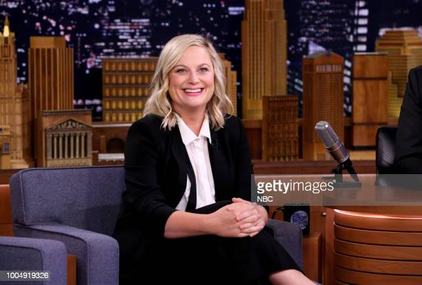 Comedian/Actress Amy Poehler on July 24 2018