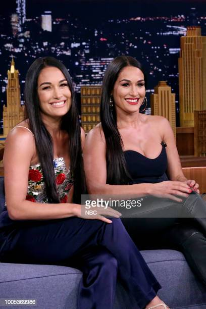 Nikki Brie Bella during an interview on July 25 2018
