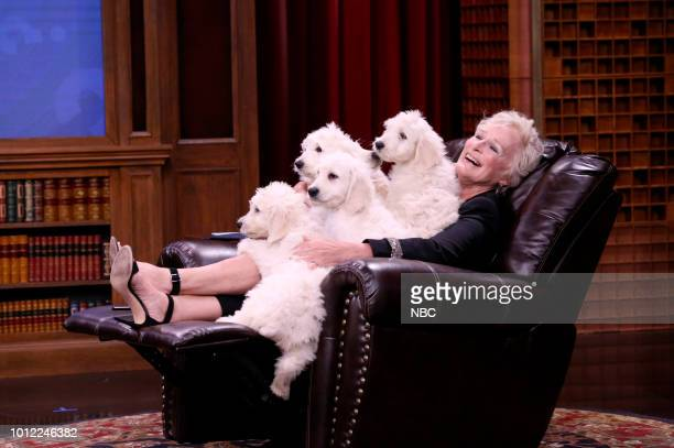 Actor Finn Wolfhard host Jimmy Fallon and actress Glenn Close play 'Pup Quiz' on August 6 2018