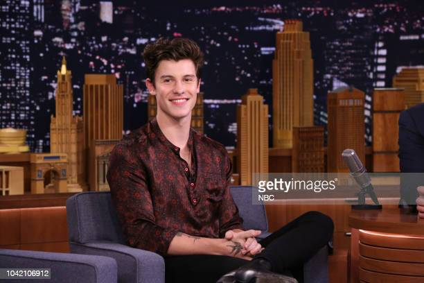 Singer Shawn Mendes during an interview on September 27 2018