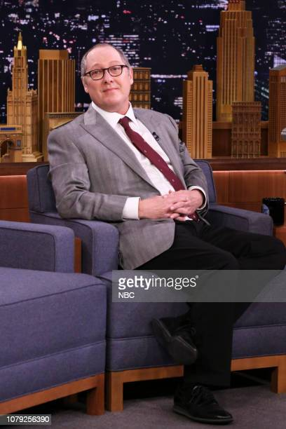 Actor James Spader during an interview on January 7 2019
