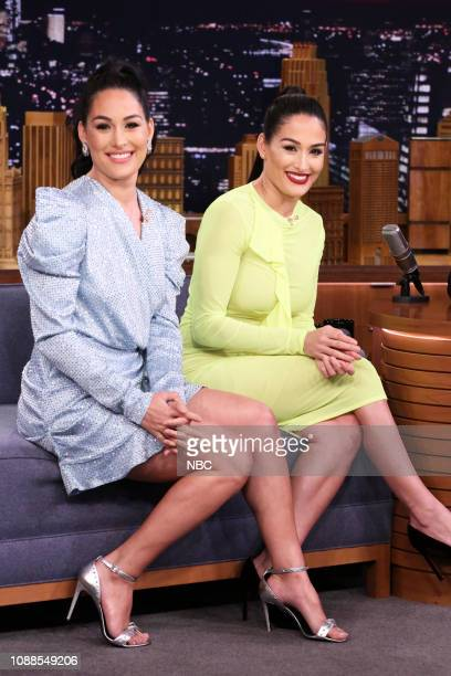 Professional Wrestlers Brie Bella and Nikki Bella during an interview on January 25 2019