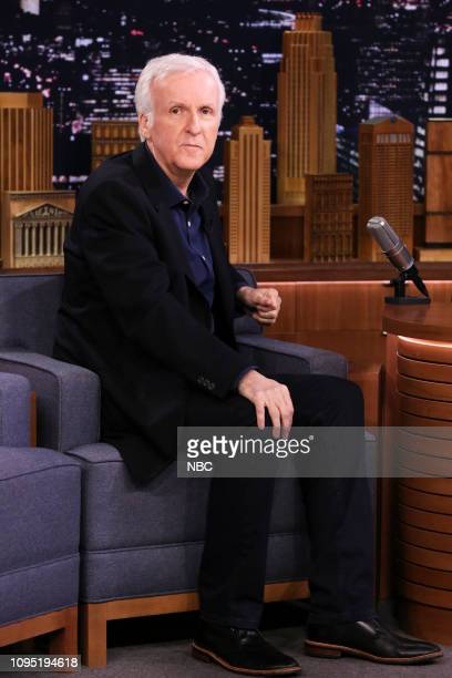Director James Cameron during an interview on February 7 2019