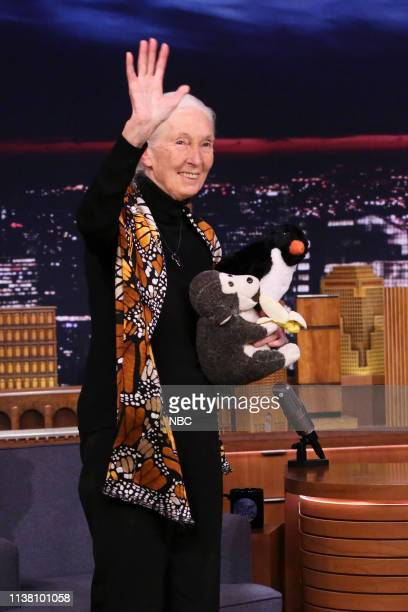 Primatologist Dr Jane Goodall arrives to the show on April 19 2019