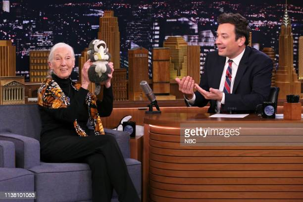 Primatologist Dr Jane Goodall during an interview with host Jimmy Fallon on April 19 2019