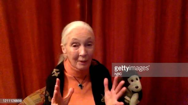 Episode 1247E -- Pictured in this screengrab: Dr. Jane Goodall on April 22, 2020 --