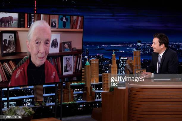 Episode 1520 -- Pictured: Primatologist Jane Goodall during an interview with host Jimmy Fallon on Wednesday, September 22, 2021 --