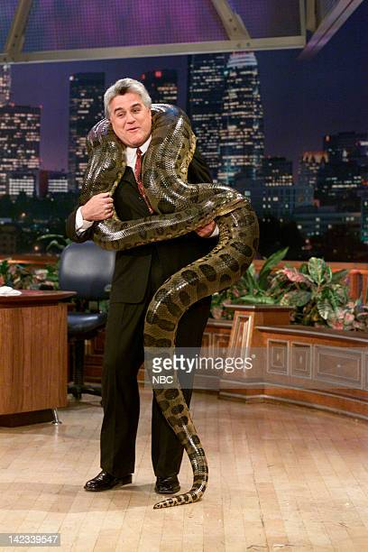 Host Jay Leno holds a large snake on August 21 2000