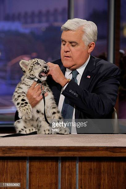 Host Jay Leno with a baby snow leopard on August 29 2013