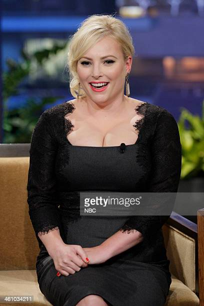 Meghan McCain during an interview on January 6 2014