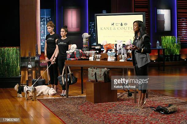 TANK 'Episode 505' The Sharks first scoff at a woman from New York NY who wants to put the 'style' in your doggy's lifestyle with her chic canine...