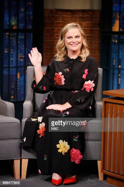 Actresscomedian Amy Poehler during an interview on June 21 2017