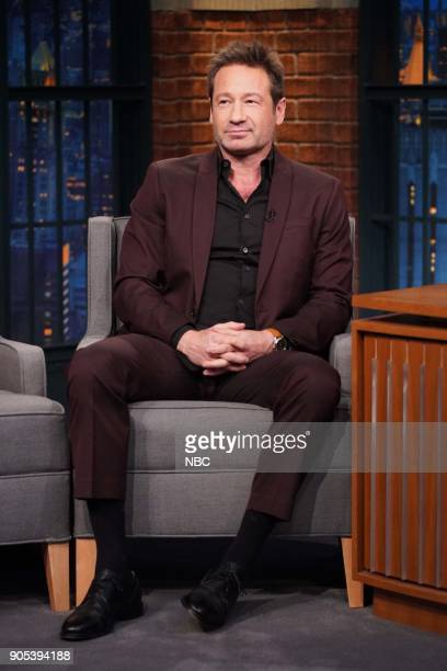 Actor David Duchovny during an interview on January 15 2018