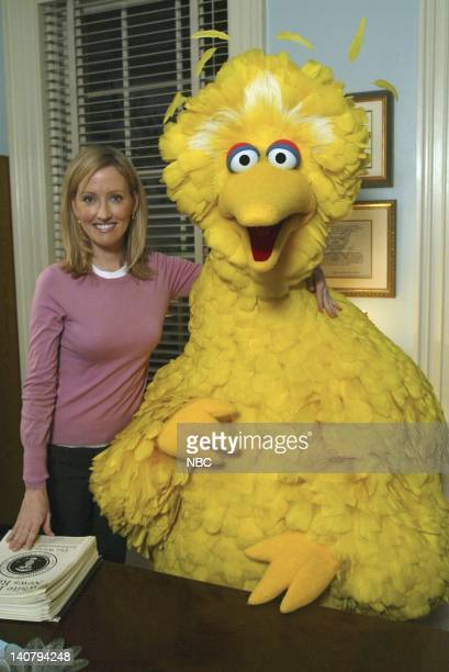 WING Eppur Si Muove Episode 16 Aired Pictured Janel Moloney as Donna Moss Big Bird Photo by Mitch Haddad/NBCU Photo Bank