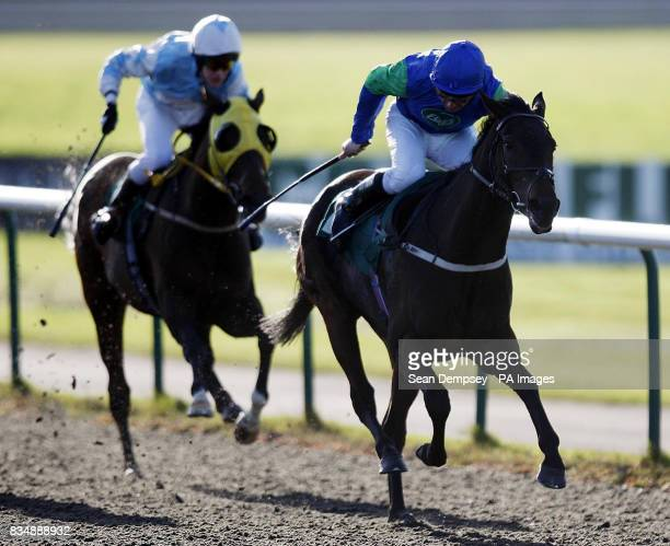 Epsom Salts ridden by Simon Walker goes on to win the Three Bridges amater riders handicap stakes at Lingfield Racecourse