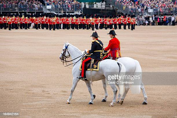 equerries, trooping the colour, london, england - british military stock pictures, royalty-free photos & images