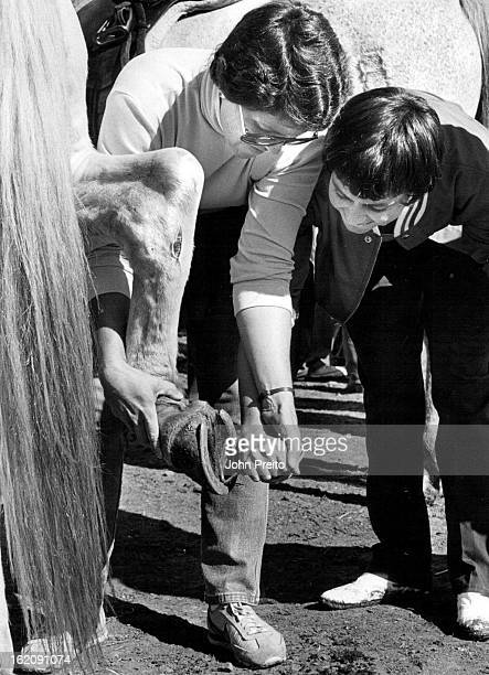 10/2/1984 OCT 17 1984 Equestrian center handicapped riding program Here we have a student learning how to clean out of clean out the hoofs of the...