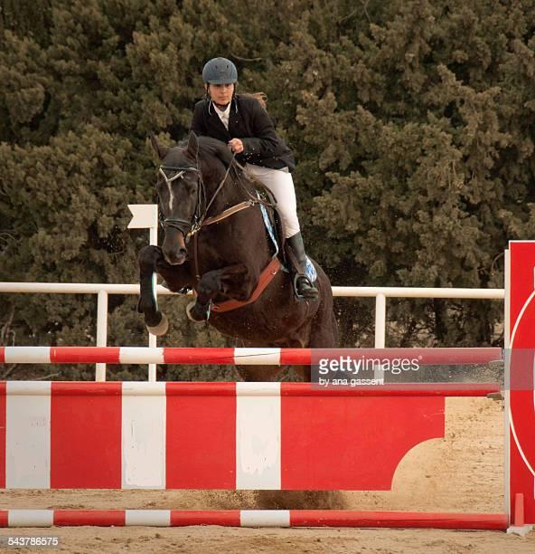 Equestrian clear show jump