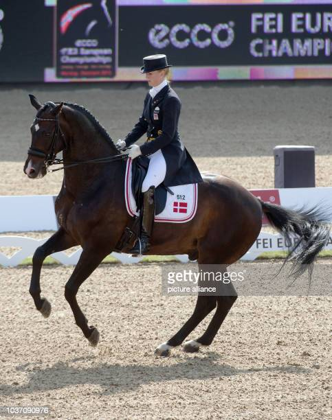 Equestrian Nathalie zu SaynWittgenstein of Denmark performs on her horse Digby during the team dressage event at the European Show Jumping and...