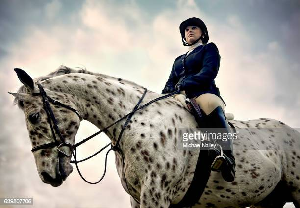 equestrian - recreational horseback riding stock pictures, royalty-free photos & images
