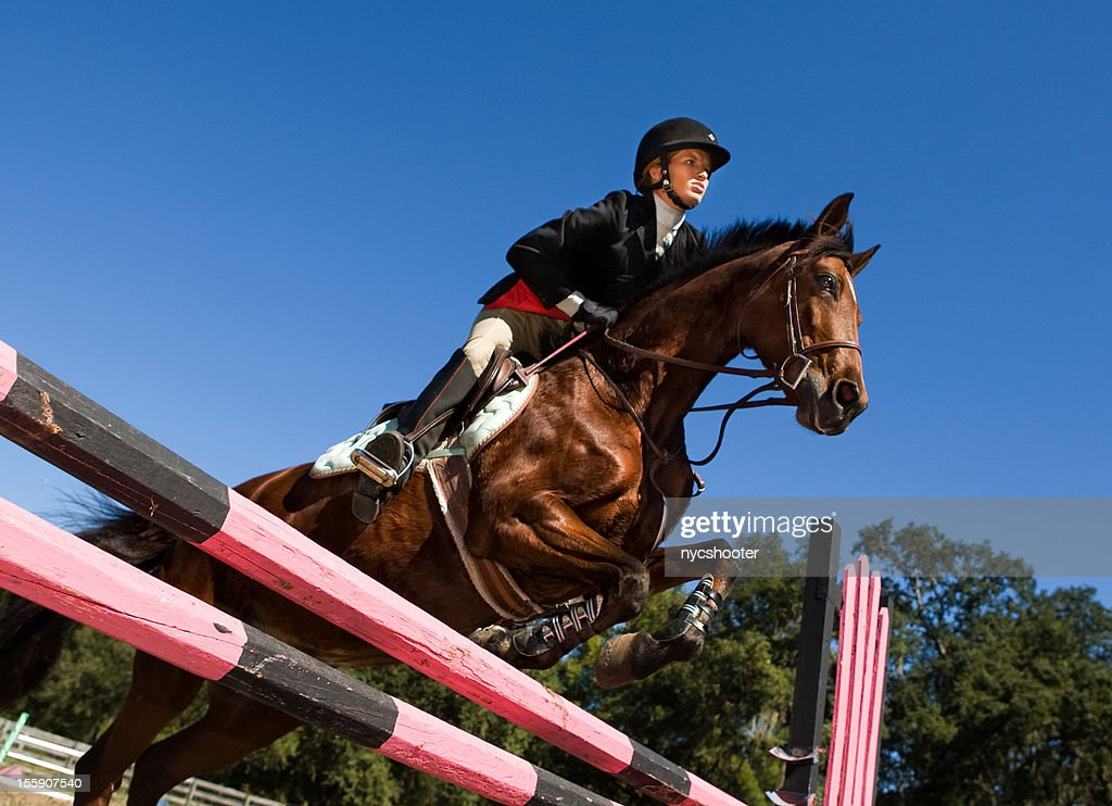 Equestrian show jumping : Stockfoto