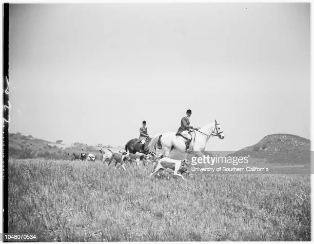Equestrians 09 May 1951 Janet O'Neil AlhambraMargery Kessler TarzanaChamp Hough 17Phillip FrenchPercy DunnCaption slip reads 'Photographer Monteverde...