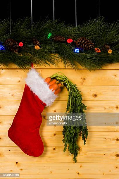 equine christmas - carrots - christmas horse stock pictures, royalty-free photos & images