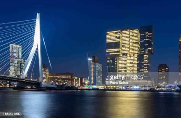 erasmus bridge and riverside skyscrapers, rotterdam, netherlands - frans sellies stock pictures, royalty-free photos & images