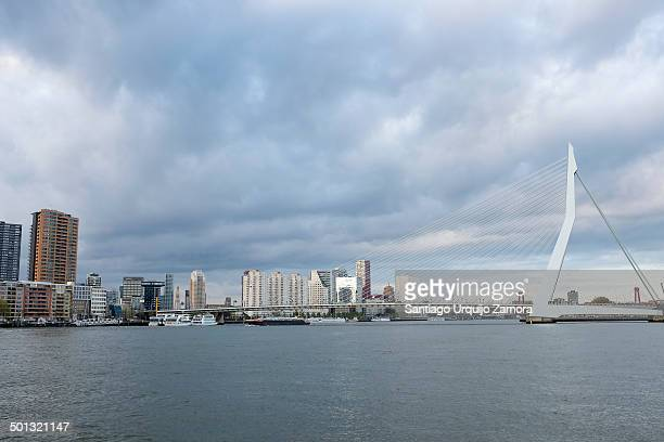 CONTENT] Erasmus Bridge over one of its many harbor canals and skyline of center of Rotterdam Rotterdam South Holland Netherlands