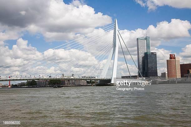 Erasmusbrug Erasmus Bridge spanning the River Maas Rotterdam Netherlands