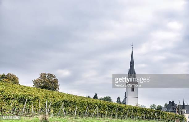 Erbach and St. Markus Church - Rheingau, Germany