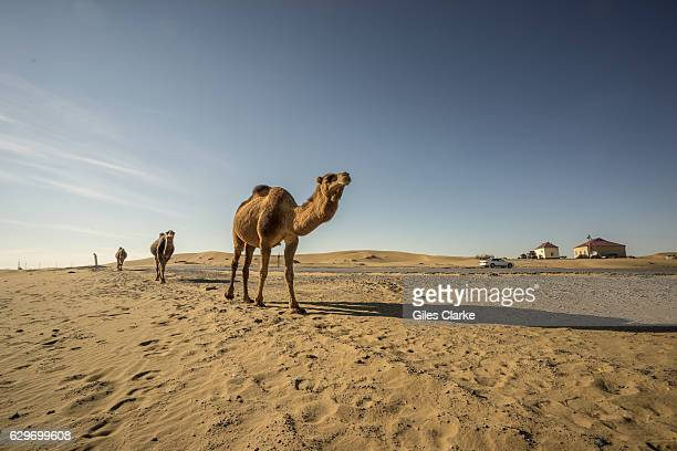 Erbent is a village in Ahal Province Turkmenistan The village is located in the Karakum Desert in central Turkmenistan It is the largest settlement...
