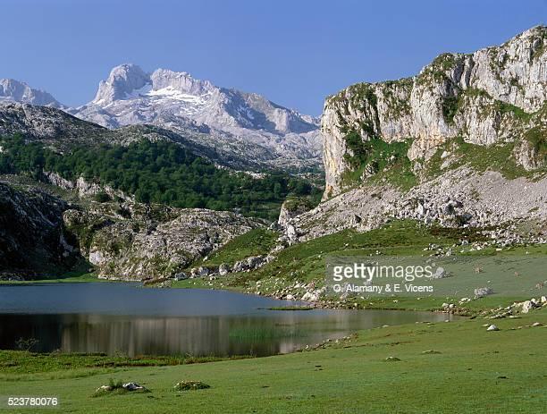 Ercina Lake and Picos de Europa