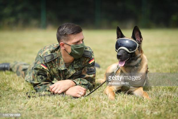 Erec a specially trained explosives detection dog wearing special dog sunglasses and his dog handler Bundeswehr member Robert Zacharz is seen at the...