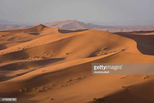 Erg Chebbi dunes in Moroccan Sahara Desert at sunrise