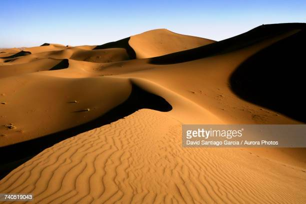 erg chebbi dunes in sahara desert - merzouga stock pictures, royalty-free photos & images