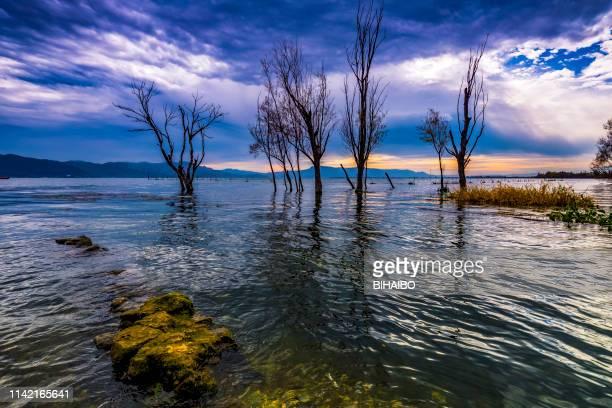 erhai lake, dali, yunnan province, china - yunnan province stock pictures, royalty-free photos & images