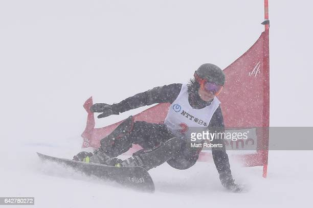 Eri Yanetani of Japan competes in Women's Giant Slalom on day two of the 2017 Sapporo Asian Winter Games at Sapporo Teine on February 19, 2017 in...