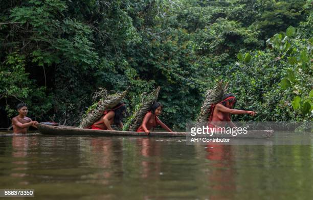 Eriana Waiapi gives directions to cross the Feliz river while carrying each of them more than 50 kilos of manioc to prepare Caixiri a craft beer made...